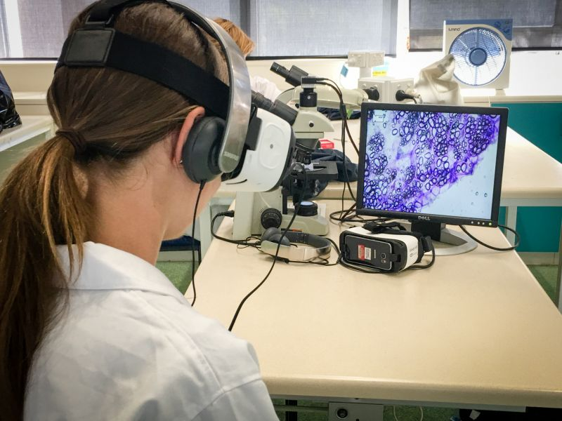 A Biology student views VR during class. In the background is a display of plant cells under a microscope used to view plant cells